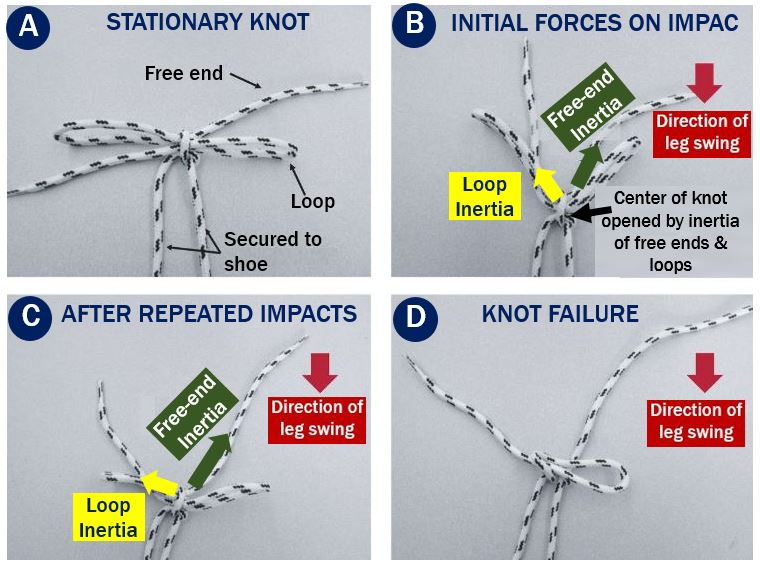 How the shoelaces come undone from movement and impacts