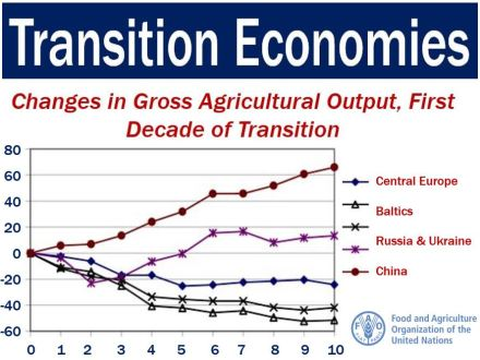 Transition Economy - changes in agriculural production