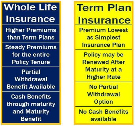 Whole Life Insurance vs Term Plan Insurance