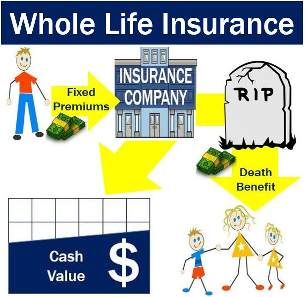 Whole Life Insurance Definition And Meaning Market Business News