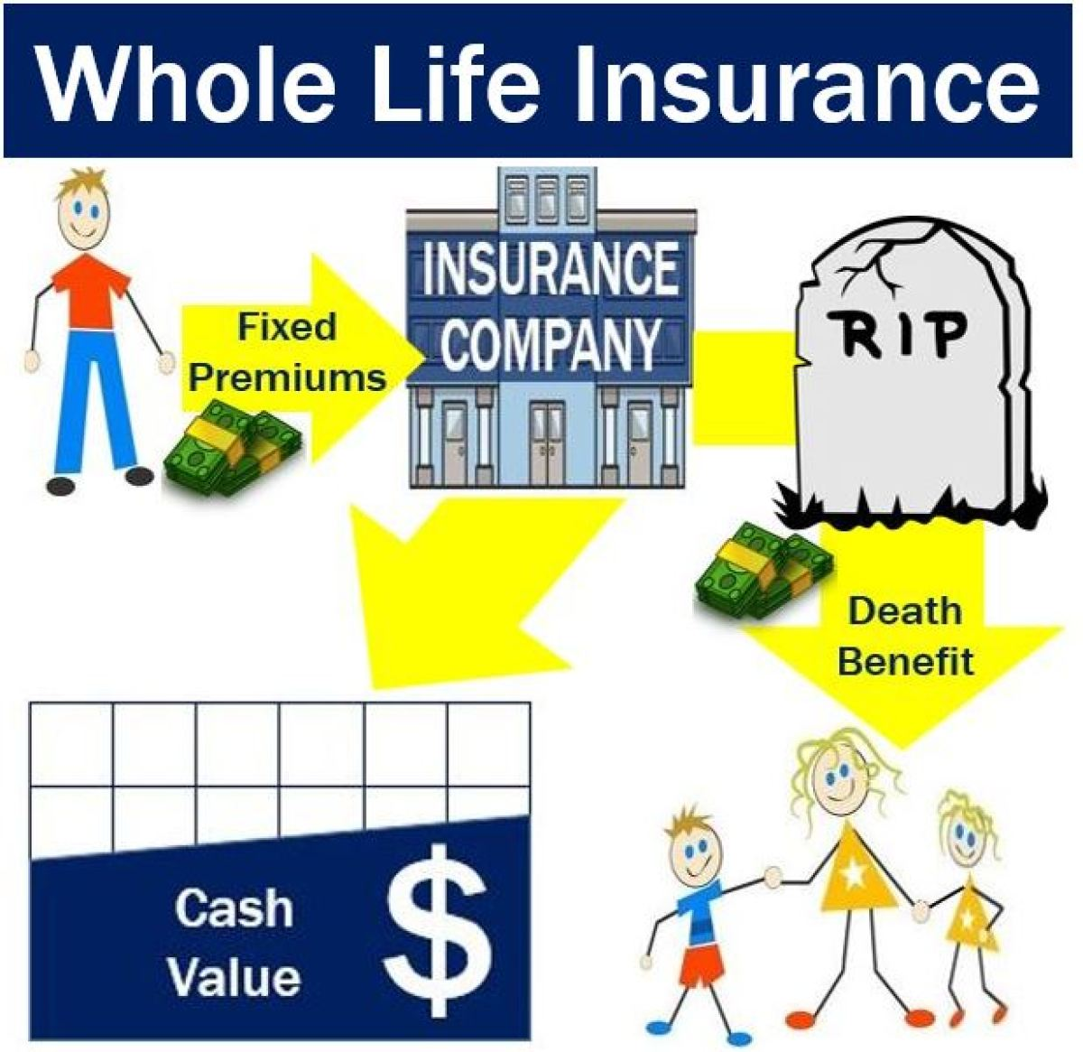 Whole Life Insurance Definition And Meaning Market ...