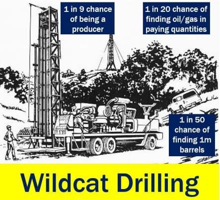 Wildcat drilling - chances of striking it rich