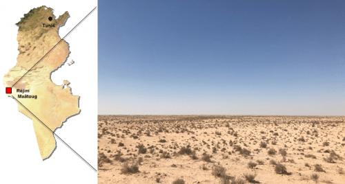 Sahara Desert TuNur solar plant location