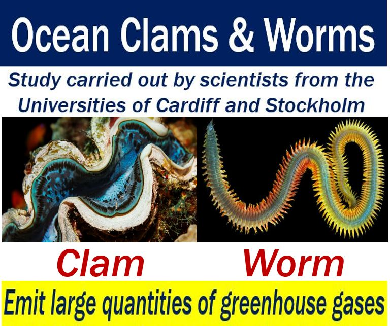 Ocean clams and worms - emit lots of greenhouse gases