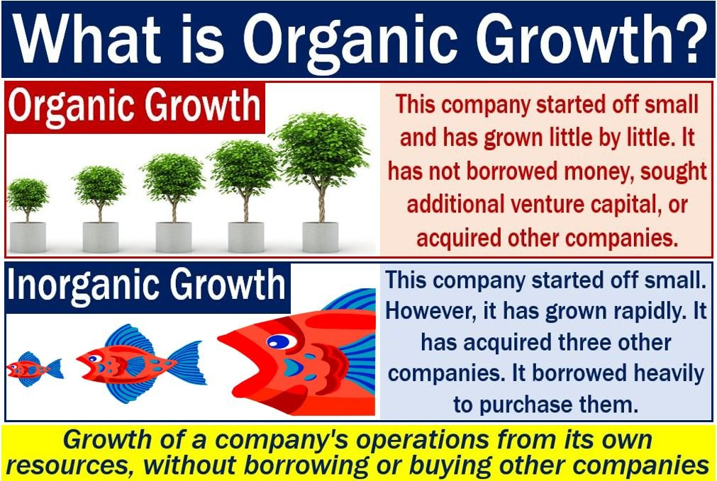 What is organic growth? - Market Business News