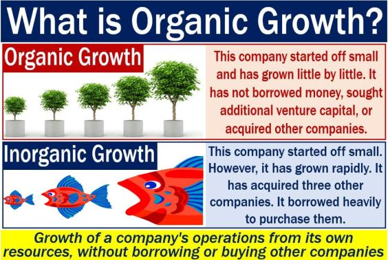 Organic growth - definition and two opposing examples