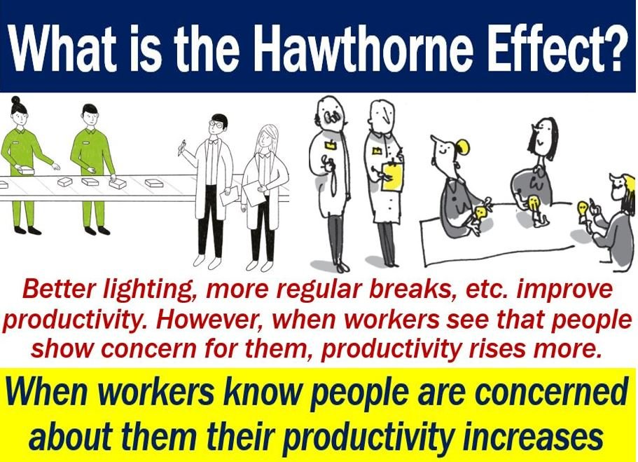 Hawthorne Effect - definition and images