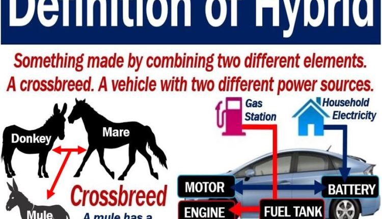 Hybrid – definition and two examples