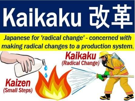 Kaikaku - definition and image