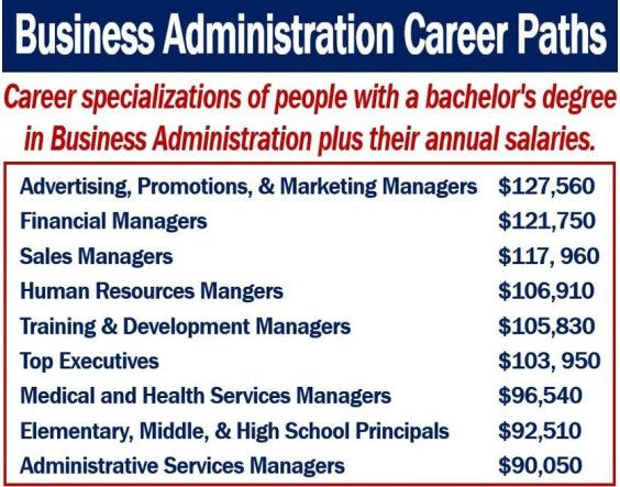 Business Administration Career Paths