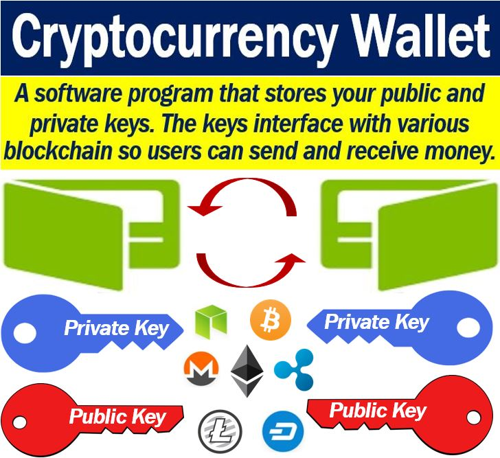 difference between cryptocurrency wallets