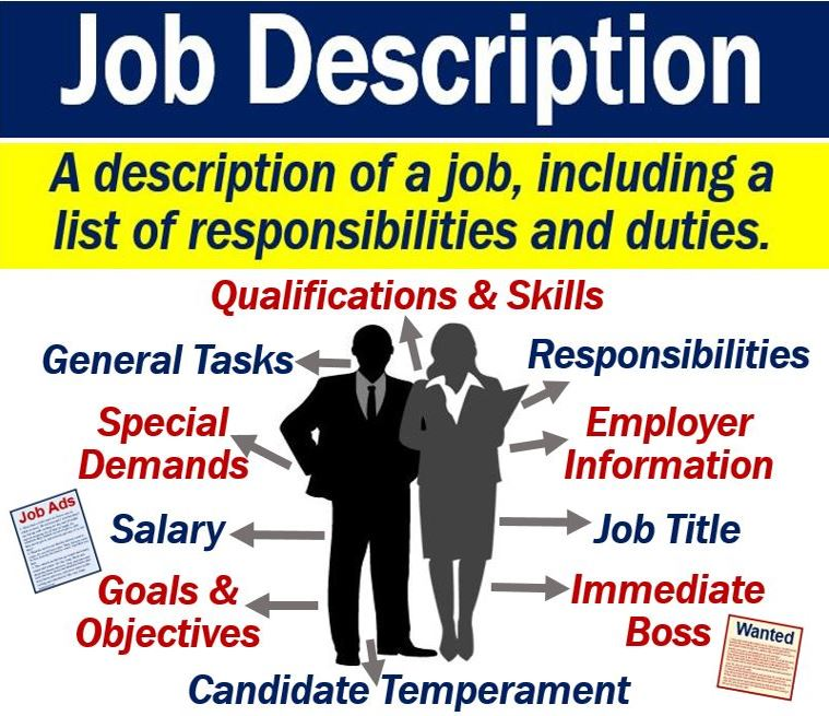 what is meaning of employment