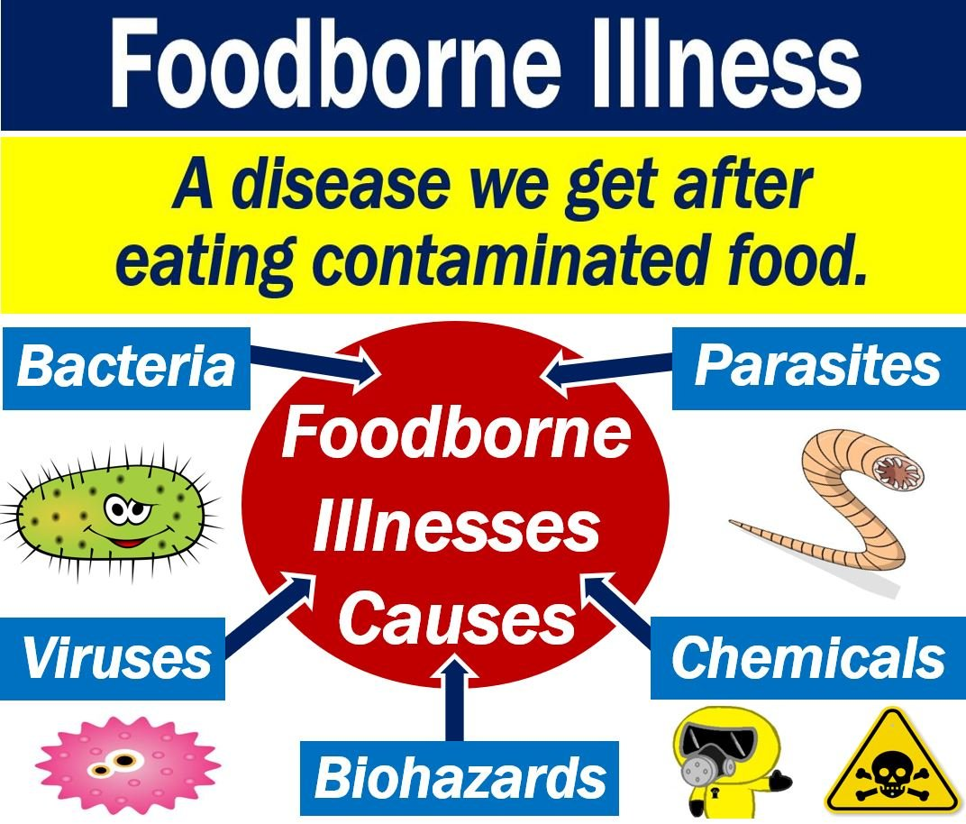 what is a foodborne illness? definition and examples - market