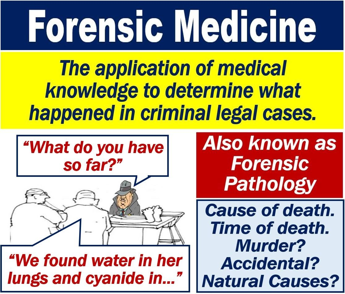 What is forensic medicine? Definition and examples - Market