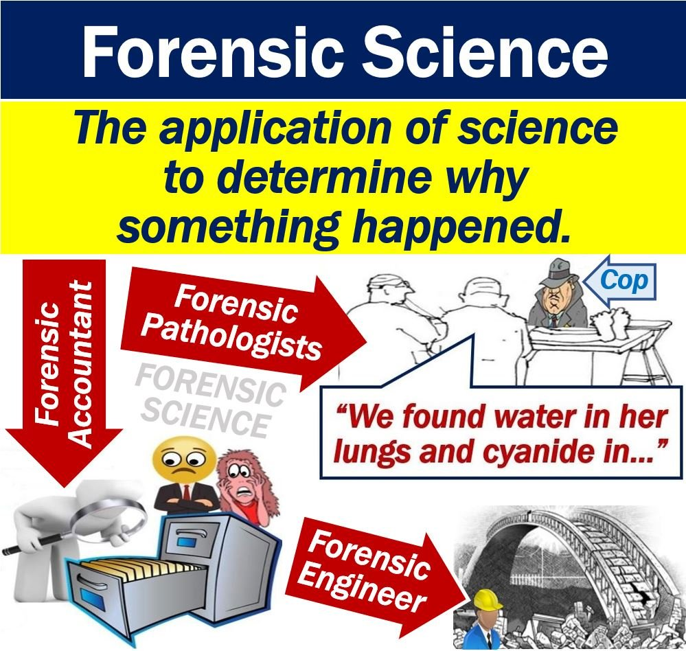 what is forensic science? definition and examples - market business news