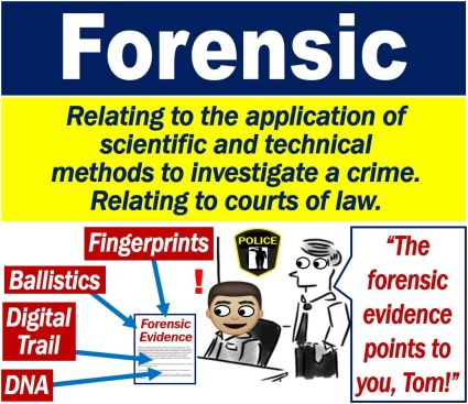 What is forensic? Definition and examples - Market Business News