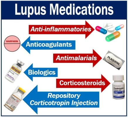 Lupus medications - many