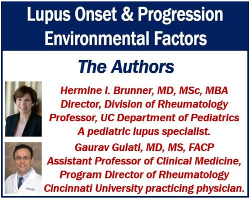 Lupus onset and progression - the authors