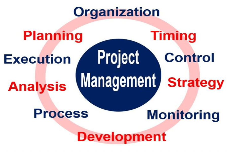 What Is Project Management Stages And Examples Market