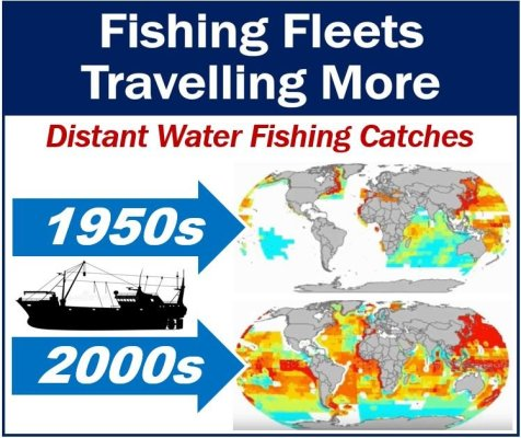 Fishing Fleets Traveling More