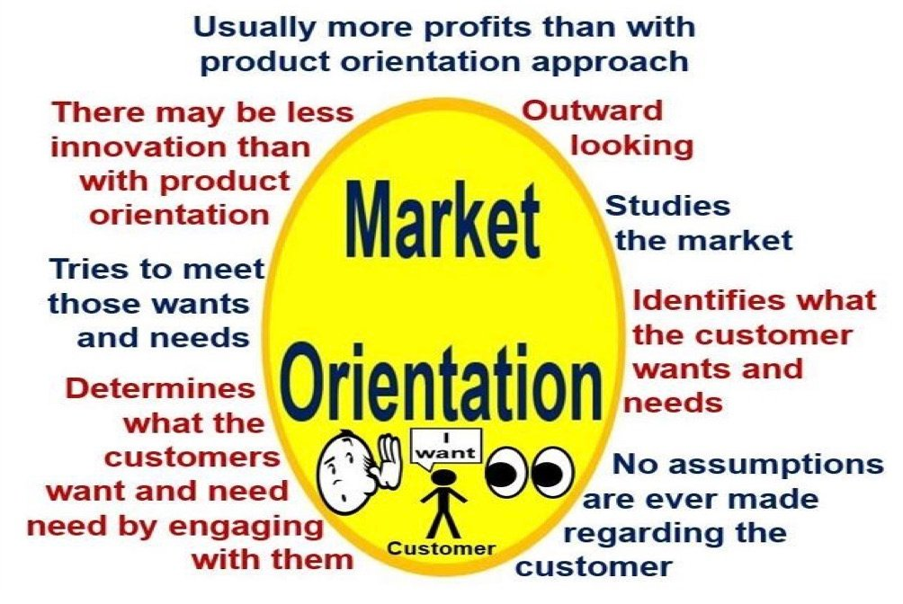 What is market orientation? Definition and stages - Market