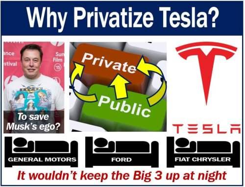 Tesla Privatization
