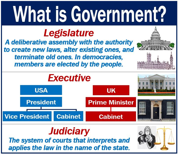 what is a government company