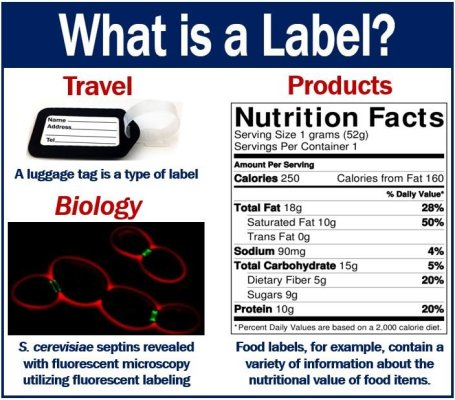What is a Label