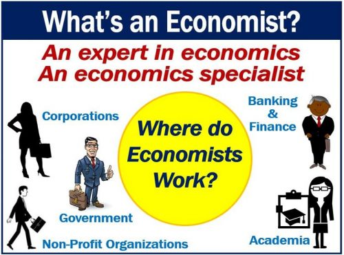 Economist - definition and examples