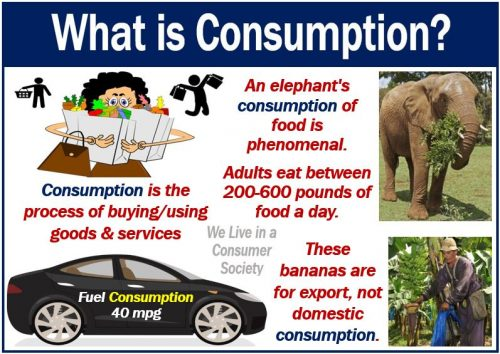 Consumption - definition and examples