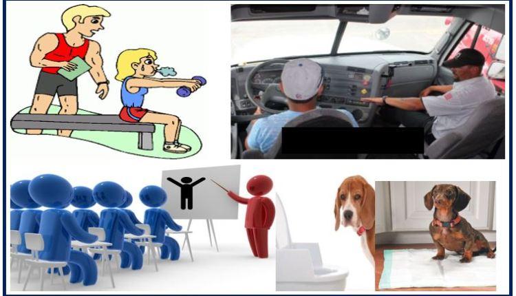 Training thumbnail