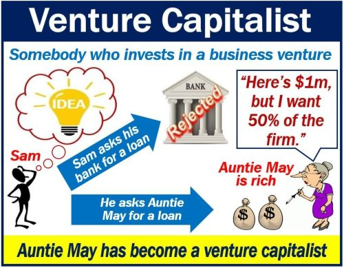 Venture Capitalist image
