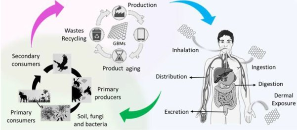 Graphene Flagship image showing graphene life cycle