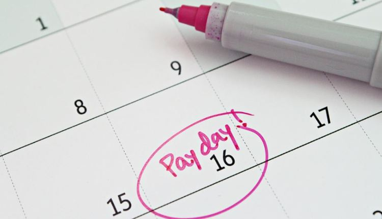 Single touch payroll article – image
