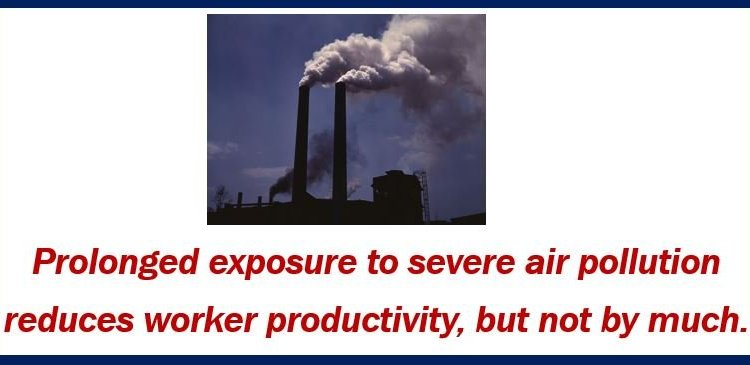 Worker productivity and air pollution – thumbnail