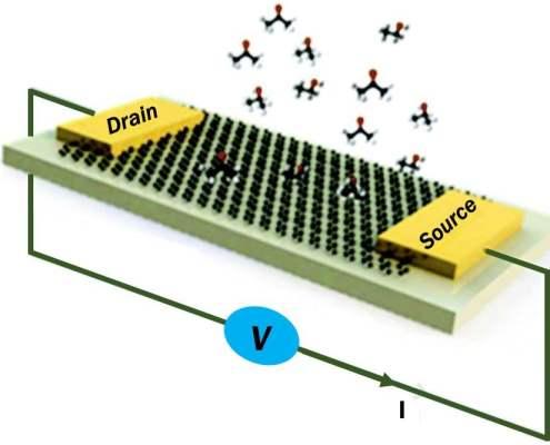 Graphene Biosensor article - image top