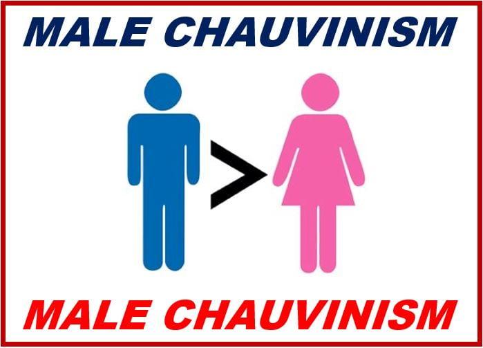 Define male chauvinism