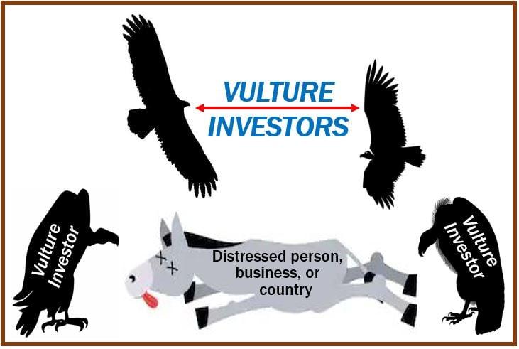 Vulture investor image 43993993