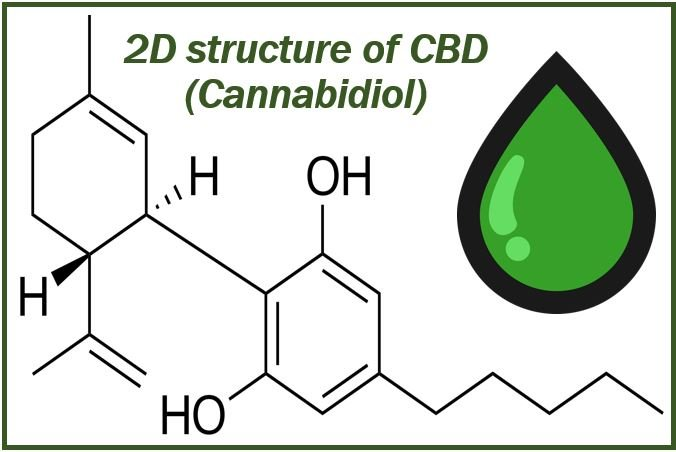 CBD image for article 89893