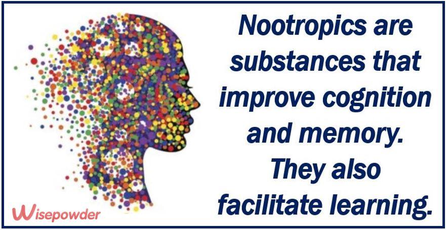 Nootropics article image 3333