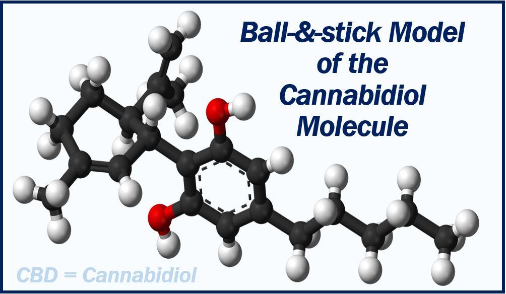 CBD molecule image 737373737