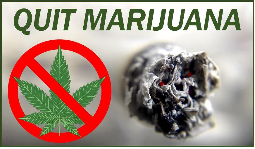 Quitting marijuana image 4938547