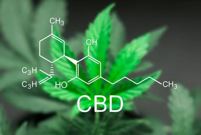 is cbd legal in all 50 states 2020