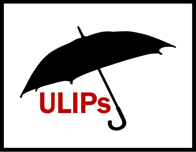 Understand Investment Strategies Offered Under ULIPs