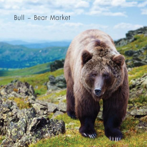 Bull–Bear Market