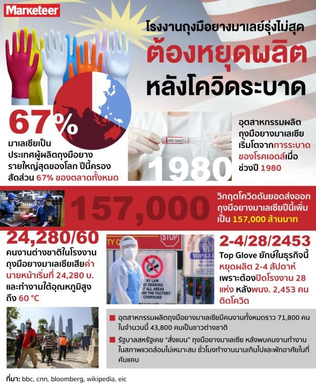 Glove_info ถึงมือยาวมาเลเซีย