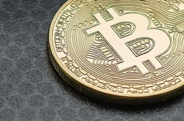 Bitcoin 5 Elon Musk