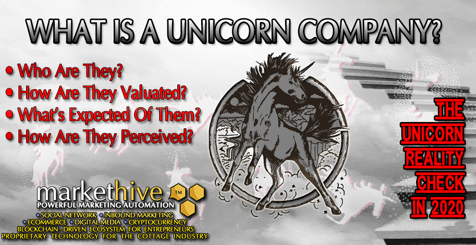 WHAT IS A UNICORN COMPANY? 2