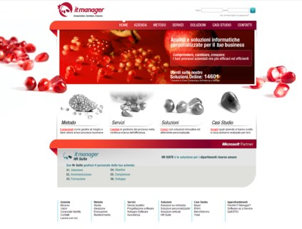 Homepage sito web it manager