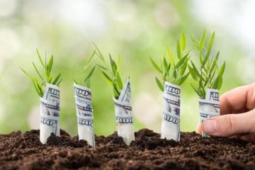 Colombia Startup & Investor Summit apoya a los 18 emprendimientos destacados del país